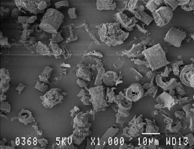 diatomite microscopic product